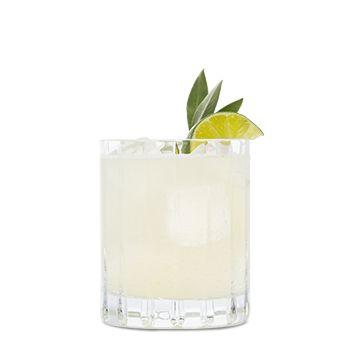 alpine margarita patr n tequila